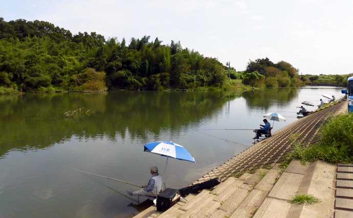 今週のヘラブナ推薦釣り場【埼玉県・越辺川】