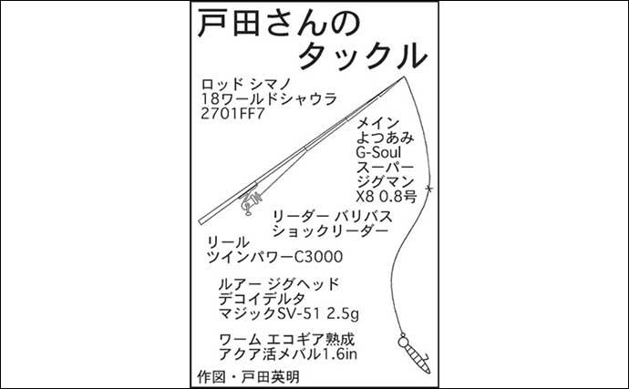 都市河川でナイトシーバス 流れのヨレで60cm超手中【愛知・新川】