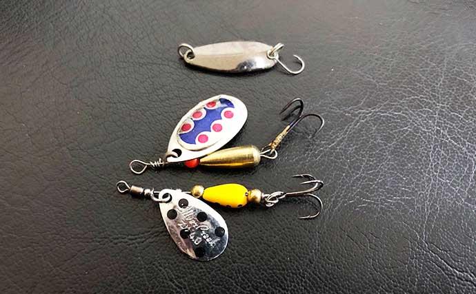 淡水のグッドファイター『ニゴイ』釣りのススメ 使うルアーや釣り方は?