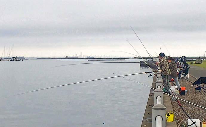 木更津港でアジ&ワタリガニ狙い サビキで入れ食いを堪能【千葉】
