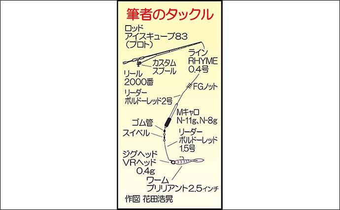 堤防アジングで良型20尾 キャロリグのボトム狙い奏功【熊本・通詞島】