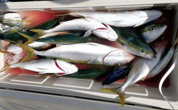 週末ナニ釣れた?沖釣り速報:圧巻の50cm特大アマダイ浮上【神奈川】