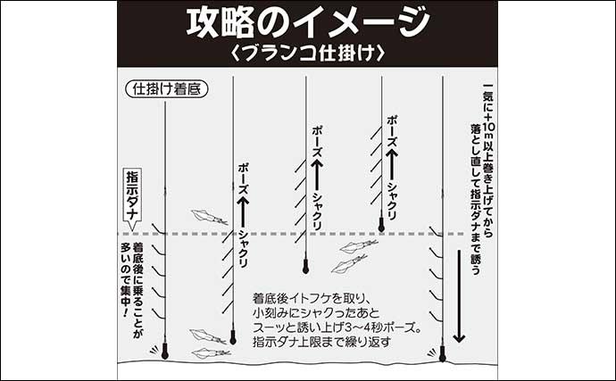 【関東2020秋】シーズン開幕『ヤリイカ』入門 タックル&釣り方キホン