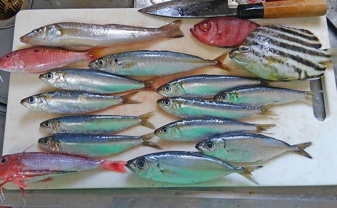 『魚体中骨抜き具』が話題に 小魚の背骨が簡単に抜ける道具とは?
