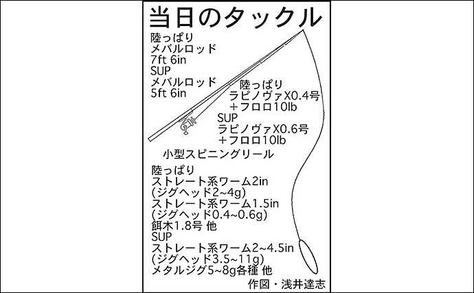 陸っぱり&SUPの2刀流ライトゲーム 怒涛の『17目釣り』達成【三重】