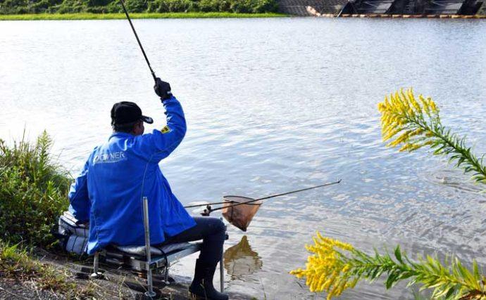 今週のヘラブナ推薦釣り場【千葉県・小糸川】