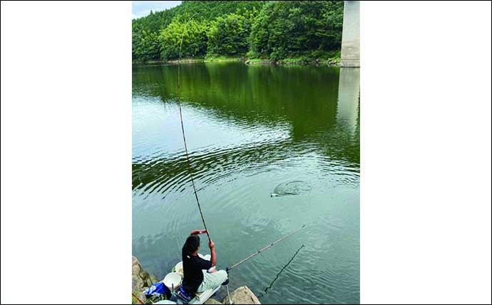 ヘラブナ釣り初心者入門 角麩をクワセにしたセットの宙釣り(第12回)