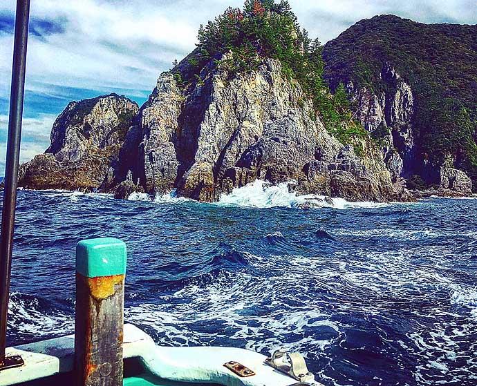 秋磯フカセ釣りで38cmグレ ガン玉の打ち分けがキモ【山口・青海島】