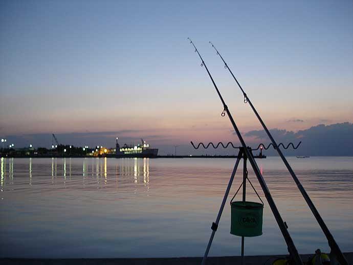 秋波止で高級魚ヒラメ&マゴチ狙うなら『ブッコミ飲ませ釣り』で決まり