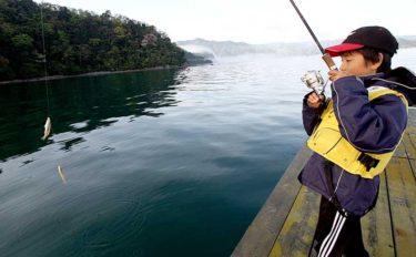 秋は『イカダ五目釣り』が老若男女にオススメ:便利な釣行道具を紹介