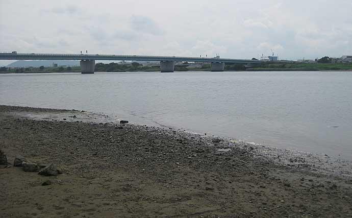 30分のハゼ釣りで12匹手中 手返しが重要【和歌山・紀ノ川河口】