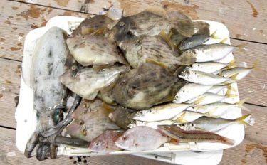 秋は『イカダ五目釣り』が楽しい季節 家族釣行に最適な4つの理由とは?