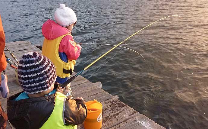 秋の『イカダ五目』が老若男女にオススメ:サビキでのアジ釣り攻略法4選