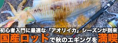 秋エギングには「国産ロッド」が好適 釣り人視点の3つのメリットとは?秋エギングには「国産ロッド」が好適 釣り人視点の3つのメリットとは?
