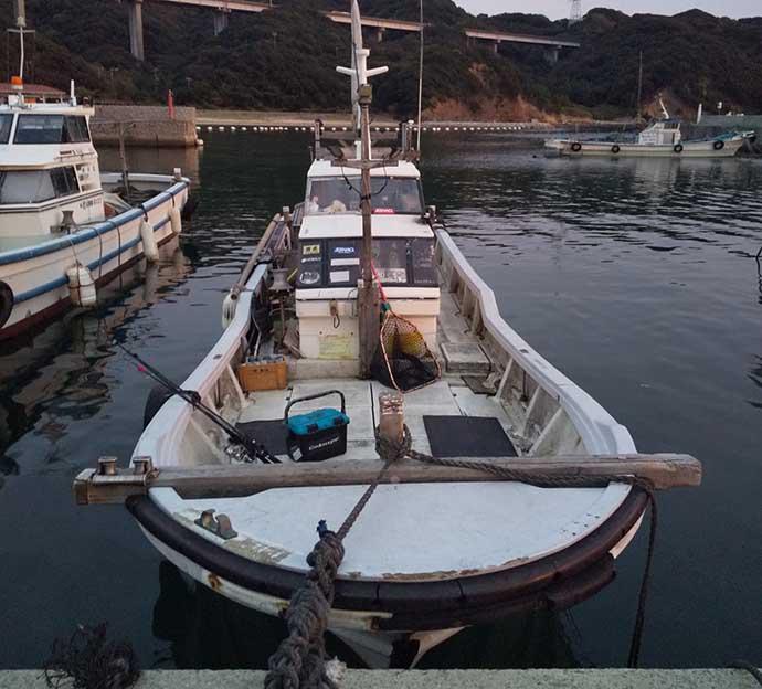 ナイトボートゲームで良型「鳴門シーバス」が乱舞【兵庫・海幸丸】