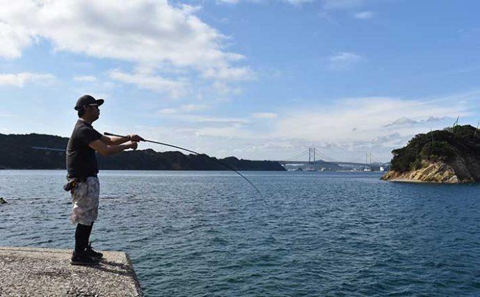 秋エギングには「国産ロッド」が好適 釣り人視点の3つのメリットとは?