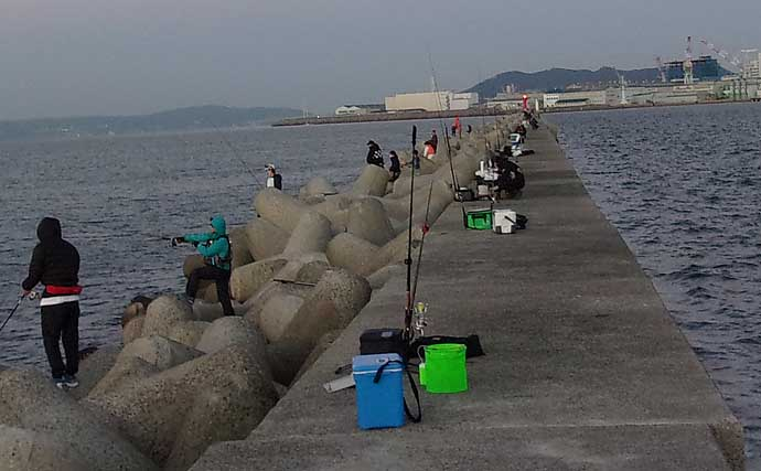 夜の沖堤防は『電気ウキ』釣りが面白い 大サバ絶賛回遊中【和田防】