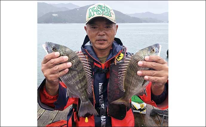 【三重2020秋】盛期の『カカリ釣り』クロダイ入門 数釣り達成の攻略法