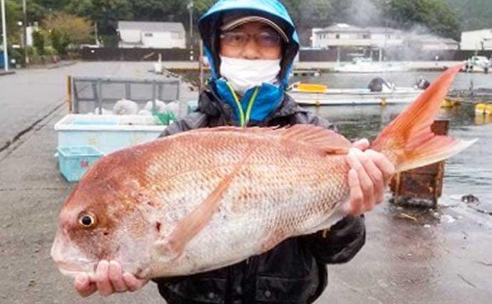 【三重】イカダ&カセ最新釣果 75cm大型マダイ浮上にアオリイカも好調