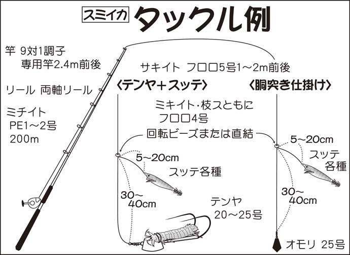 【東京湾2020】テンヤスミイカ釣りがシーズン開幕 初心者入門解説