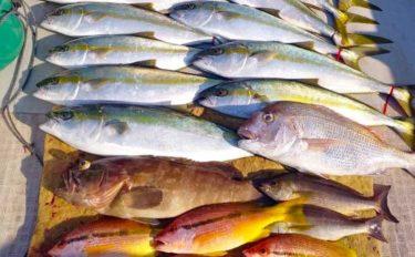 【玄界灘】落とし込み釣り最新釣果 『大型ヒラマサ』筆頭に多彩釣果