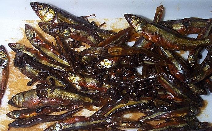 琵琶湖産アユ不漁原因は外来種の「植物プランクトン」の可能性アリ