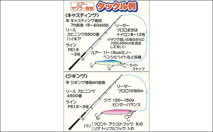 【東京湾2020】沖のルアー青物攻略法 ジグ&プラグの使い分けがカギ