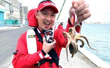 陸っぱり『イイダコ』釣りシーズンイン 良型主体に数釣り堪能【長崎】