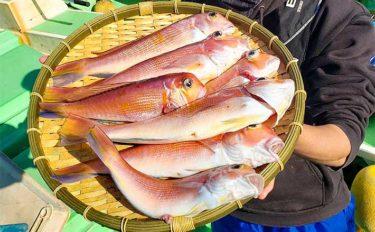 【相模湾2020】高級魚『アマダイ』釣りのキホン タックル~釣り方まで