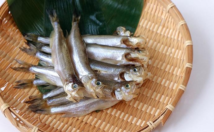 北海道むかわ町の『本ししゃも』が記録的不漁 ブランド魚としても有名