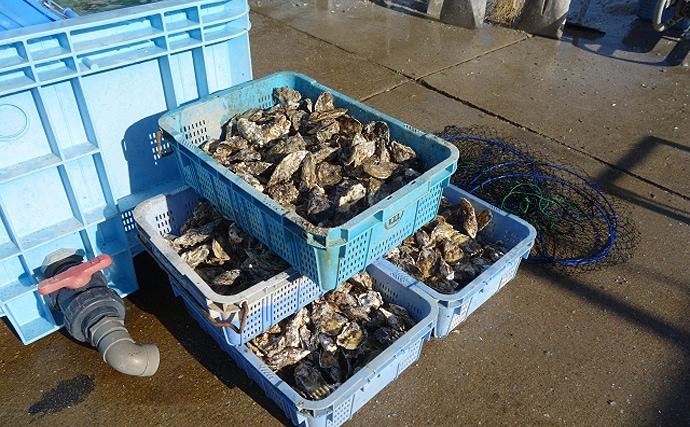 今日は何の日:11月23日は『牡蠣の日』 由来は勤労感謝の日にアリ?