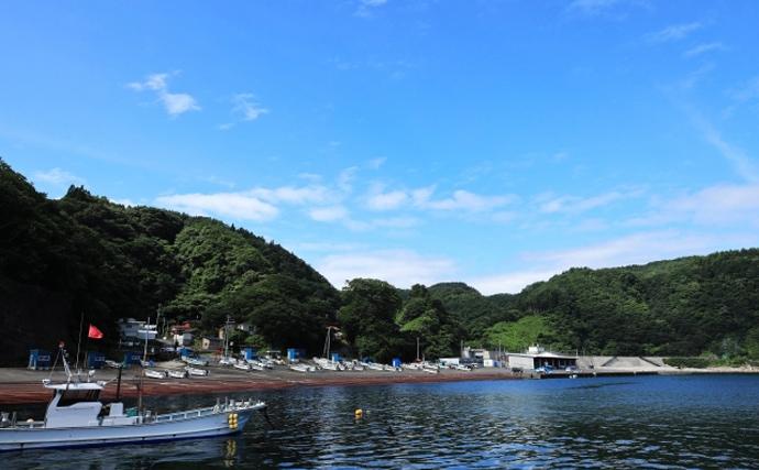 岩手県で『ギンザケ』養殖が事業化最終段階 東京湾ではすでに事業化?