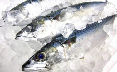 世界の「水産養殖生産量」が初減産 新型コロナ長期化で地球規模の問題に
