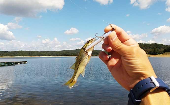 秋風景楽しむバス釣り 「アクションは貫き通す」が奏功?【入鹿池】