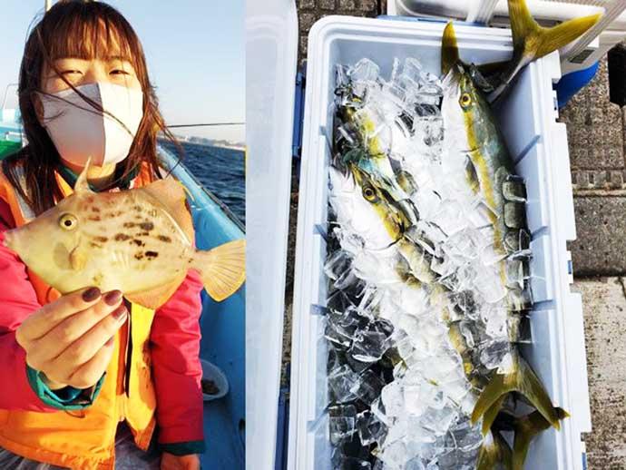 週末ナニ釣れた?沖釣り速報:イナダ好調&カワハギ本格化【関東】