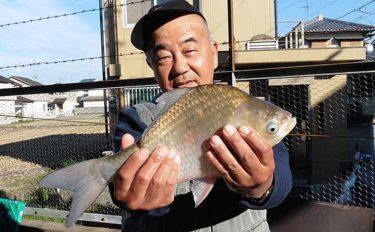 冬にオススメの全天候型釣り堀:へら釣り西池 寒ベラを狙おう【大阪】