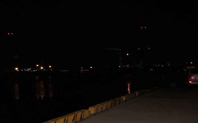夜のちょい投げ釣りで52cm頭にアナゴ11匹 足元で連発【三重・霞ふ頭】