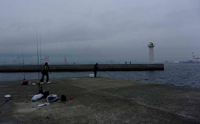 夜の沖堤防で「電気ウキ」釣り アジ17匹&タチウオ手中【神戸・8防】