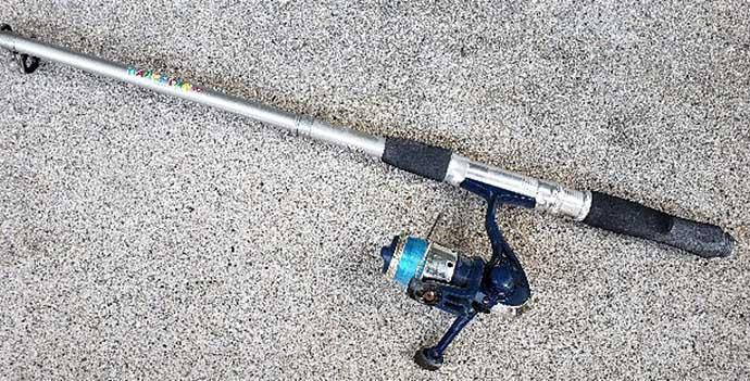 『サビキ釣りタックル』が流用できる釣り物3選 意外な大物も狙える?