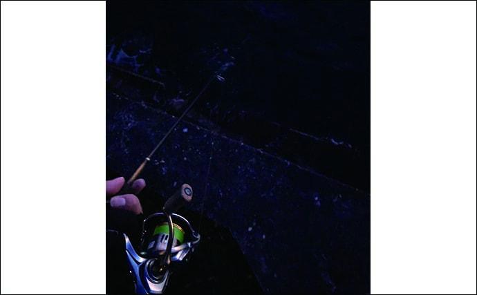 今さら聞けないメバリングのキホン:『巻きの釣り』から覚えよう