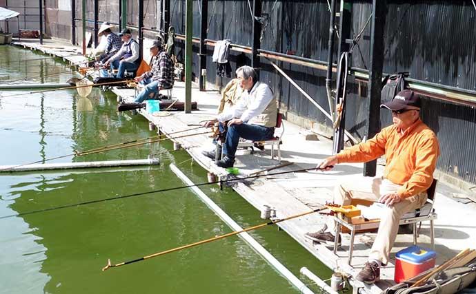 大物釣り魅力のヘラ管理釣り場で39匹 新ベラ放流で活気【大阪・西池】