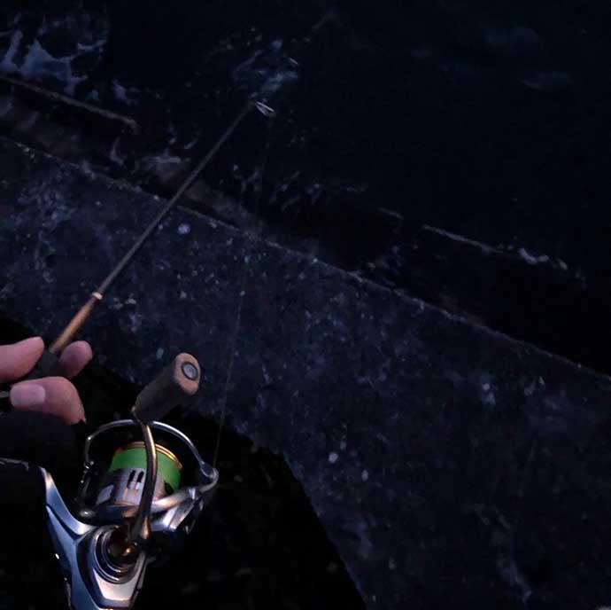 今さら聞けないメバリングのキホン:釣果にも関わる『リリース術』