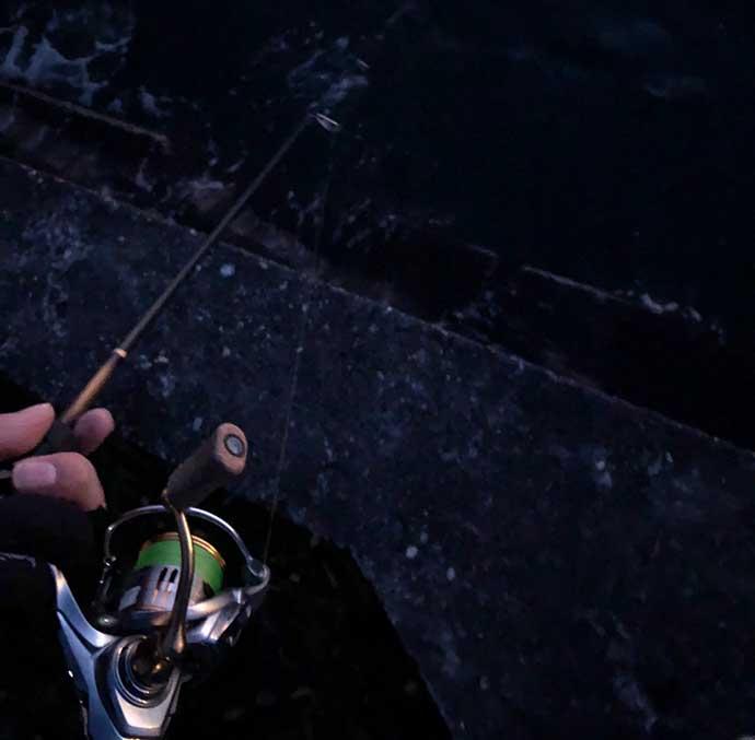 今さら聞けないメバリングのキホン:『初めての1匹』を釣るのに必要な事