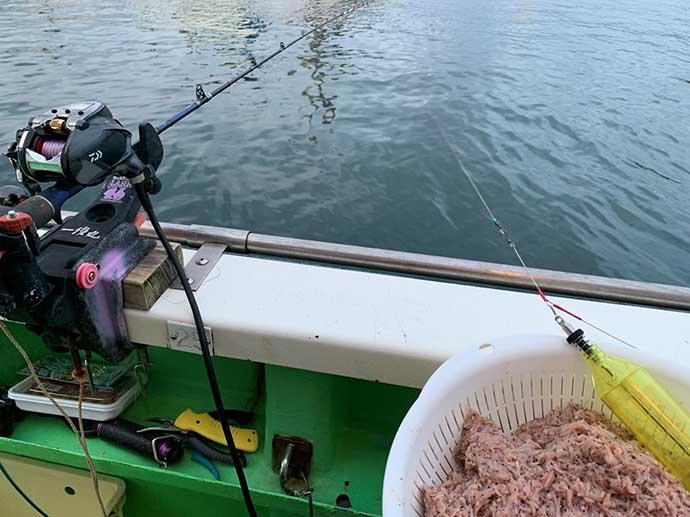 相模湾LTイナダ五目で釣れ過ぎ注意報発令中【神奈川・一俊丸】