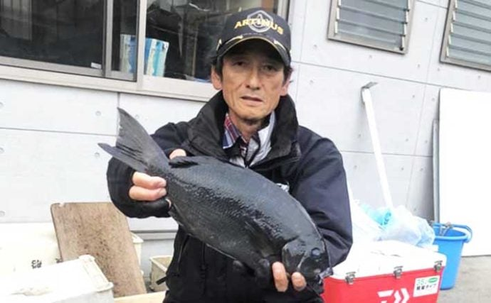 【和歌山2020冬】磯グレ好釣り場紹介:超人気『大引』の魅力を解説