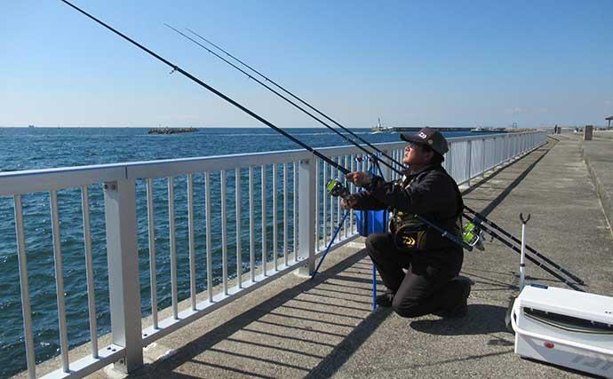2020年はカレイの当たり年 投げ釣りで35cmマコガレイ【兵庫】