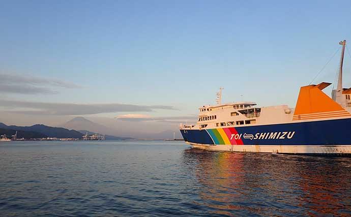 【清水港2020】ルアーで狙う陸っぱりタチウオ釣り攻略法4選