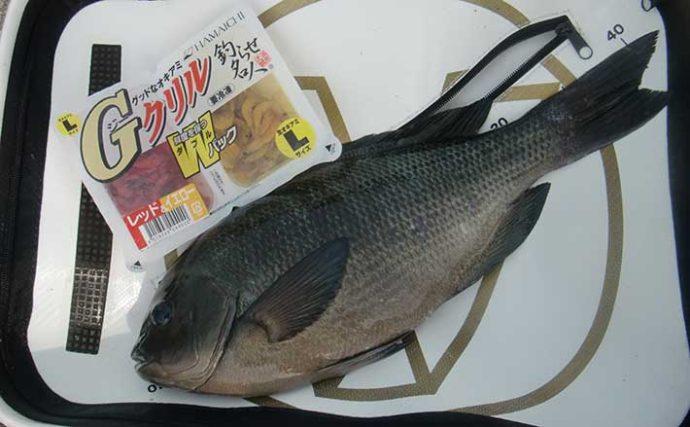釣り初心者向け解説:『フカセ釣り』の基本 必要タックル&仕掛け
