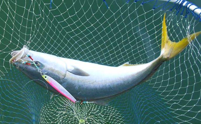 『データ釣行』のススメ 過去の釣りを分析すれば釣果確率がアップ?
