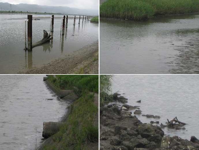 波止ハゼ好釣り場:紀ノ川河口 ミャク釣り&チョイ投げポイントを紹介